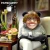 Panda Show (NO OFICIAL)