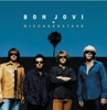 Misunderstood (Live from the Bounce Tour) - Single, Bon Jovi