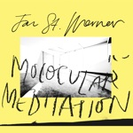 Jan St. Werner - Molocular Meditation (feat. Mark E. Smith)