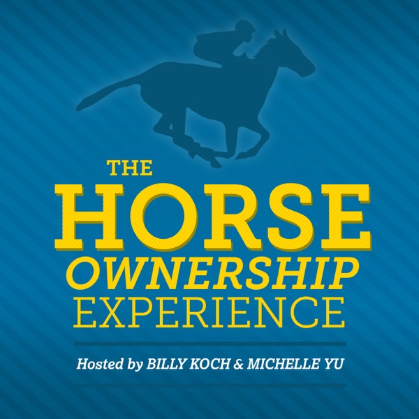 The Horse Ownership Experience