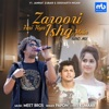 Zaroori Hai Kya Ishq Mein Band Mix feat Papon Single