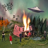 The Black Lips - In My Mind There's a Dream