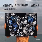 """Eighth Blackbird - These Broken Wings, Pt. 3 """"Learn to Fly"""""""