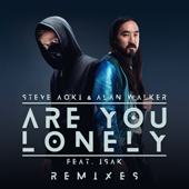 Are You Lonely (feat. ISÁK) [Steve Aoki Remix]