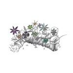 DOPE BODY - Hermit King