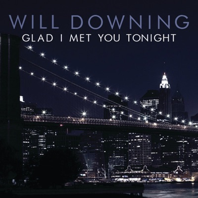 Glad I Met You Tonight - Single - Will Downing