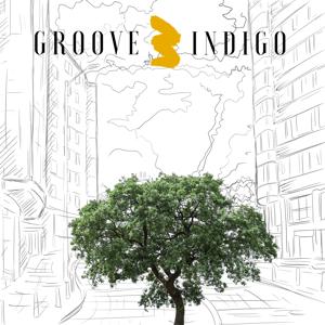 Groove Indigo - Groove Indigo