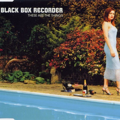 These Are The Things - Single - Black Box Recorder