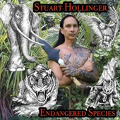 Stuart Hollinger - Yolo