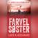 Lars Kjædegaard - Farvel søster: Agnes Hillstrøm 3