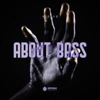 About Bass - VIZZYZ
