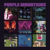 Purple Mountains - Snow is Falling in Manhattan