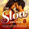 Die Slow Van Toen 8 - Various Artists