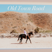 Old Town Road (Acoustic) - Tiffany Alvord - Tiffany Alvord