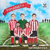 Tom Cawley - The Ungainlies