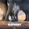 Elephant Original Soundtrack