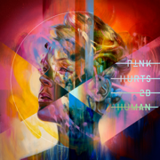 Can We Pretend (feat. Cash Cash) - P!nk - P!nk