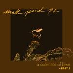 Matt Pond PA - Starlet (feat. Anya Marina)