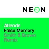 Allende - False Memory