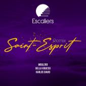 Saint-esprit (Afro-Urban Remix)