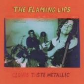 The Flaming Lips - Kim's Watermelon Gun
