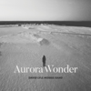Aurora Wonder - David Lyle Morris Band