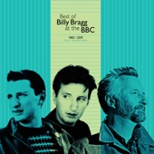 Billy Bragg - Tank Park Salute (John Peel Session, 12th May 1991)