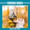 Birds & Organic Nature Sounds - Cheeping Birds artwork