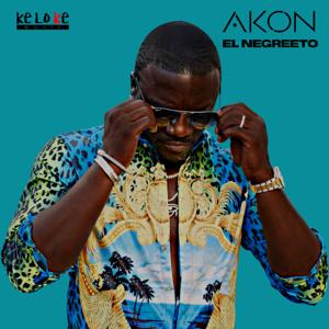 Akon - El Negreeto