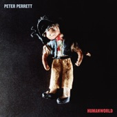 Peter Perrett - Once Is Enough