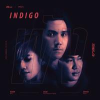 พัง - Indigo