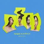 Amor Elefante - Música
