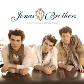 03-jonas brothers-fly with me