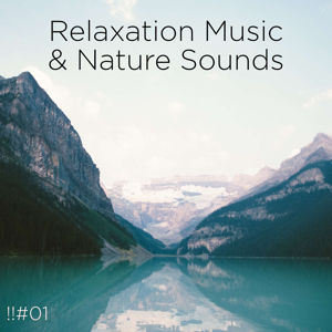 Nature Sounds Nature Music & Nature Sounds - !!#01 Relaxation Music & Nature Sounds
