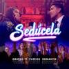 Sedúcela (feat. Patrick Romantik) - Single