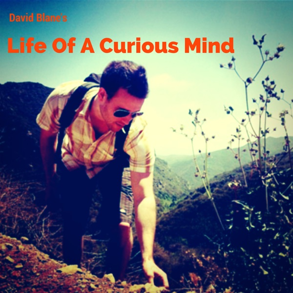 Life From A Curious Mind