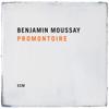 Benjamin Moussay - Promontoire  artwork