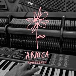 Heart-Shaped Tracks & Arnica - Heart-Shaped Box feat. Lemoskine & Bananeira Brass Band