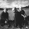 Esbjörn Svensson Trio - Providence (Live) artwork
