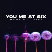 What's It Like - You Me At Six