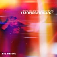 Torn 2 Shreds - Single