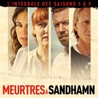 Télécharger Meurtres à Sandhamn, L'intégrale des saisons 1 à 9 (VOST) Episode 17