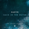 HAEVN - Back in the Water artwork