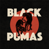 Black Pumas - Black Pumas Cover Art