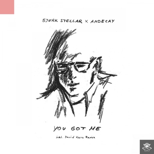You Got Me - Single by Bjørk Stellar