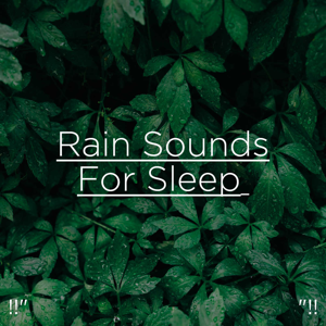 "Rain Sounds & Rain for Deep Sleep - !!"" Deep Sleep Rain ""!!"