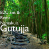B2C ENT & Rema - Gutujja artwork