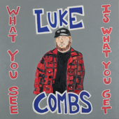 What You See Is What You Get - Luke Combs Cover Art