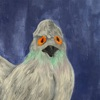 Pigeon - Single