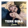 Zaeden - Tere Bina - Single